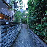 Lots of interesting narrow streets in Kagurazaka. Noticed the cobbled road, called Ishidatami in Japanese. (石畳 いしだたみ)